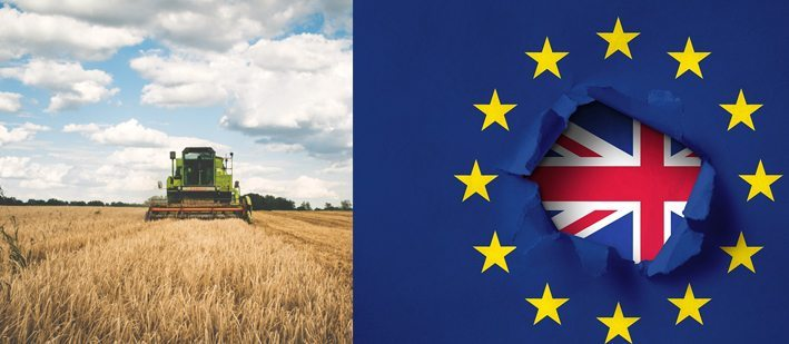 Brexit effect on farming subsidies