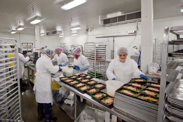 Food Manufacturing Facility Problems 1cold Ltd